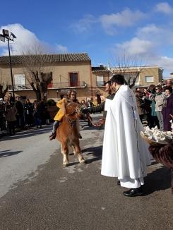 Cientos de animales reciben, un año más, la bendición de San Antón